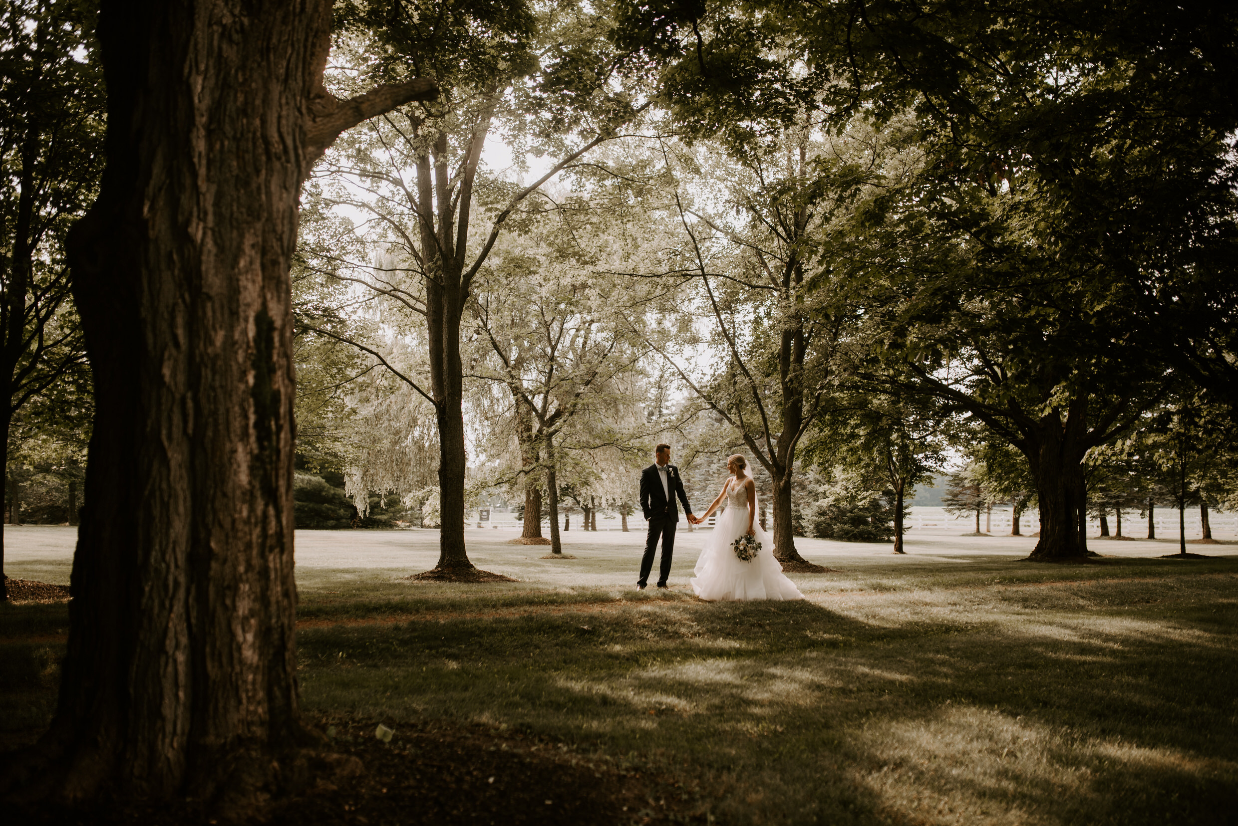 Belcroft Estates Wedding - bride and groom back-lit in the woods
